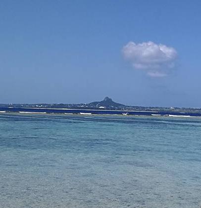 Beach View from Churauimi Aquarium Okinawa