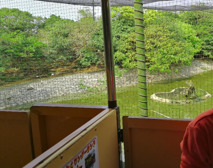 Neo Park Okinawa train