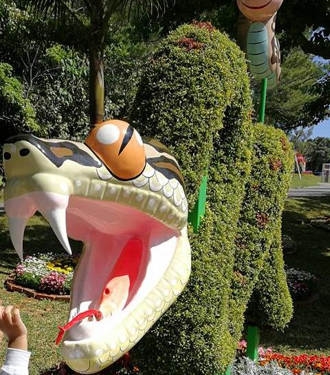 Botanical Garden Okinawa3