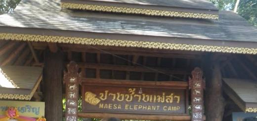 Maesa Elephant Camp Chiang-mai Thailand
