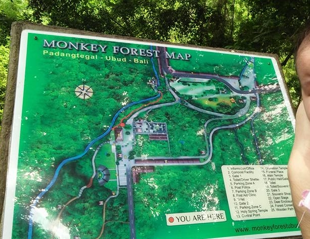 Ubod Forest Map Indonesia