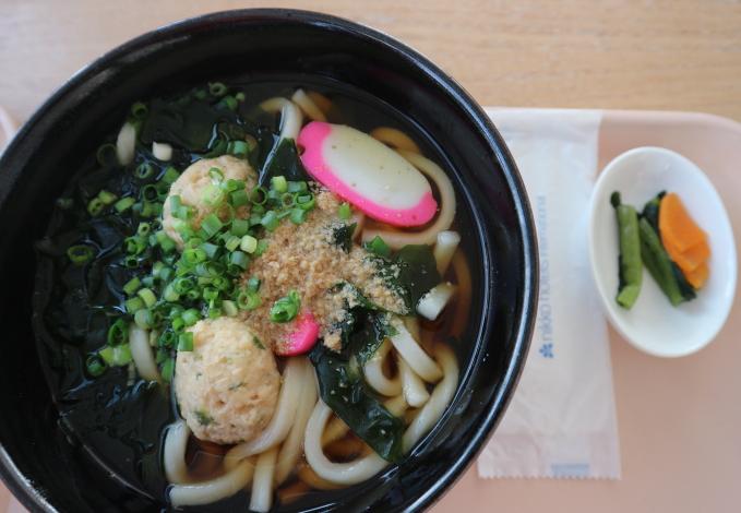 Udon from Panorama restaurant at Toki Messe Japan.