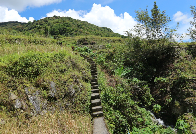 The trail to Hapao Rice Terraces.