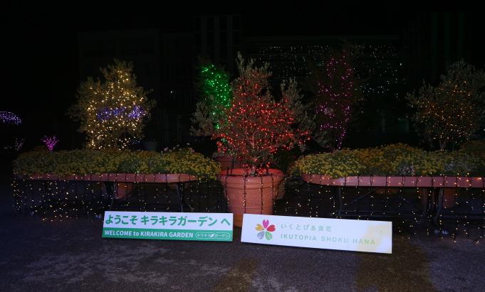 The Kira-Kira Garden, Niigata Japan.