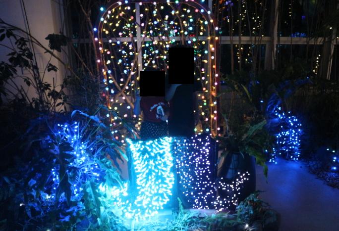 Mermaid display of lights from Kira-Kira Garden.