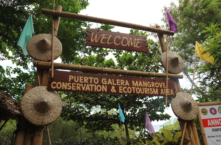 The Mangroves site of Puerto Galera.