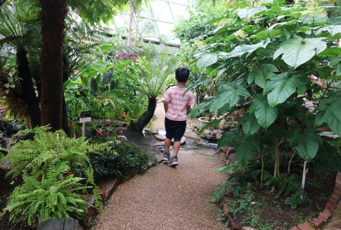 The walk at greenhouse Niigata Botanical Garden.