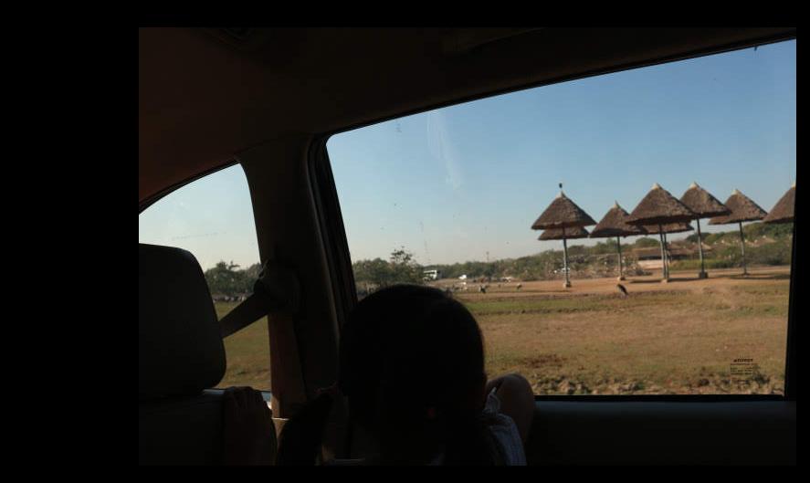 Our Open zoo tour at Safari World Thailand.