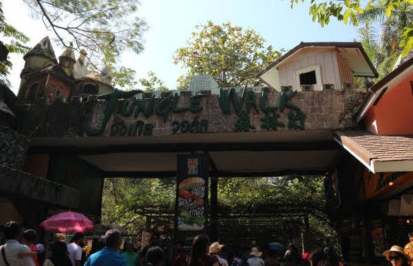The jungle walk of the safari world.