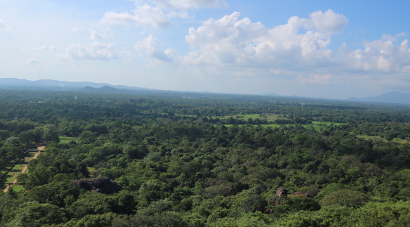The view from the top of Sigiriya rock.