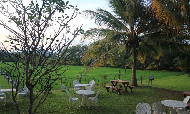 Relaxing vibes of Sigiriana hotel.
