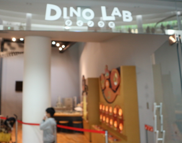 The dino lab of the museum.