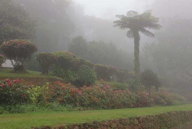 Japanese garden at The Hakgala Botanical Garden.
