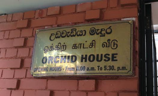 The orchid house of Peradeniya Royal Botanic Garden.