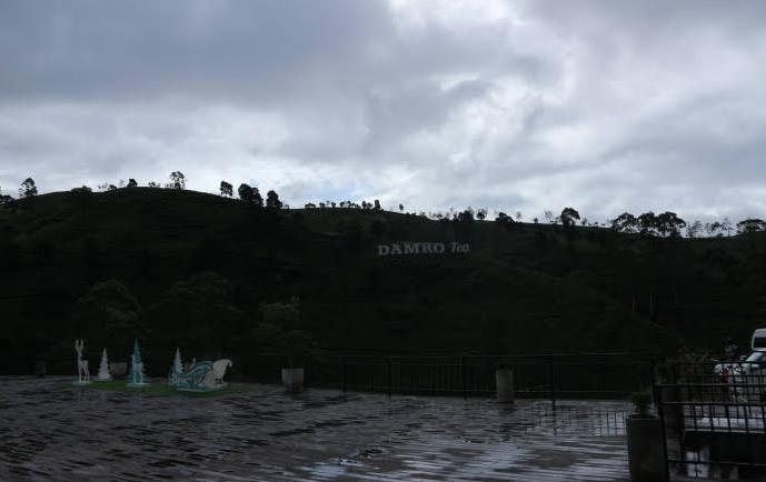 The Damro Tea Factory.