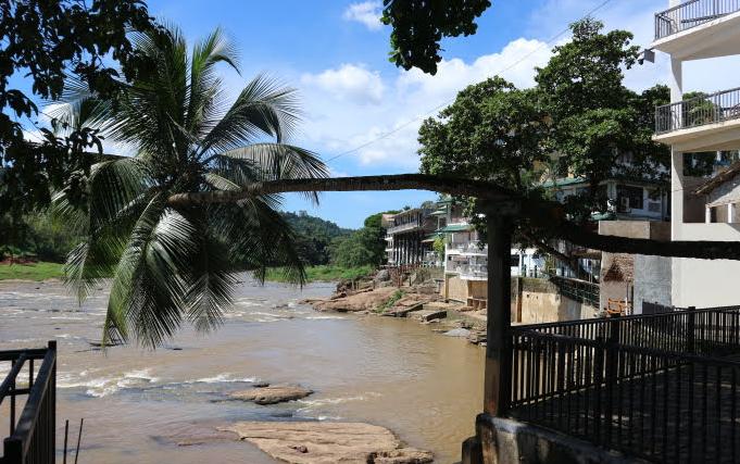 The river for bathing the elephants at  Pinnawala Elephant orphanage Sri Lanka