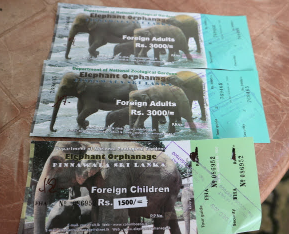 Our tickets at Pinnawala Elephant orphanage Sri Lanka.