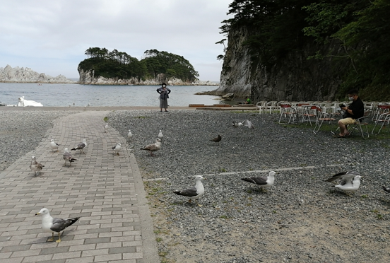The Marine house with friendly birds.