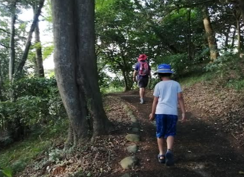 A little walk at the Matsushima bay nearby forest.